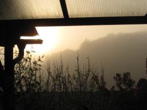 Herbst Nebel 06