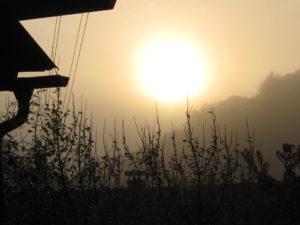 Herbst Nebel 07