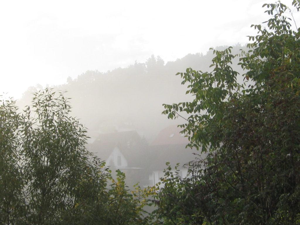Herbst Nebel 09