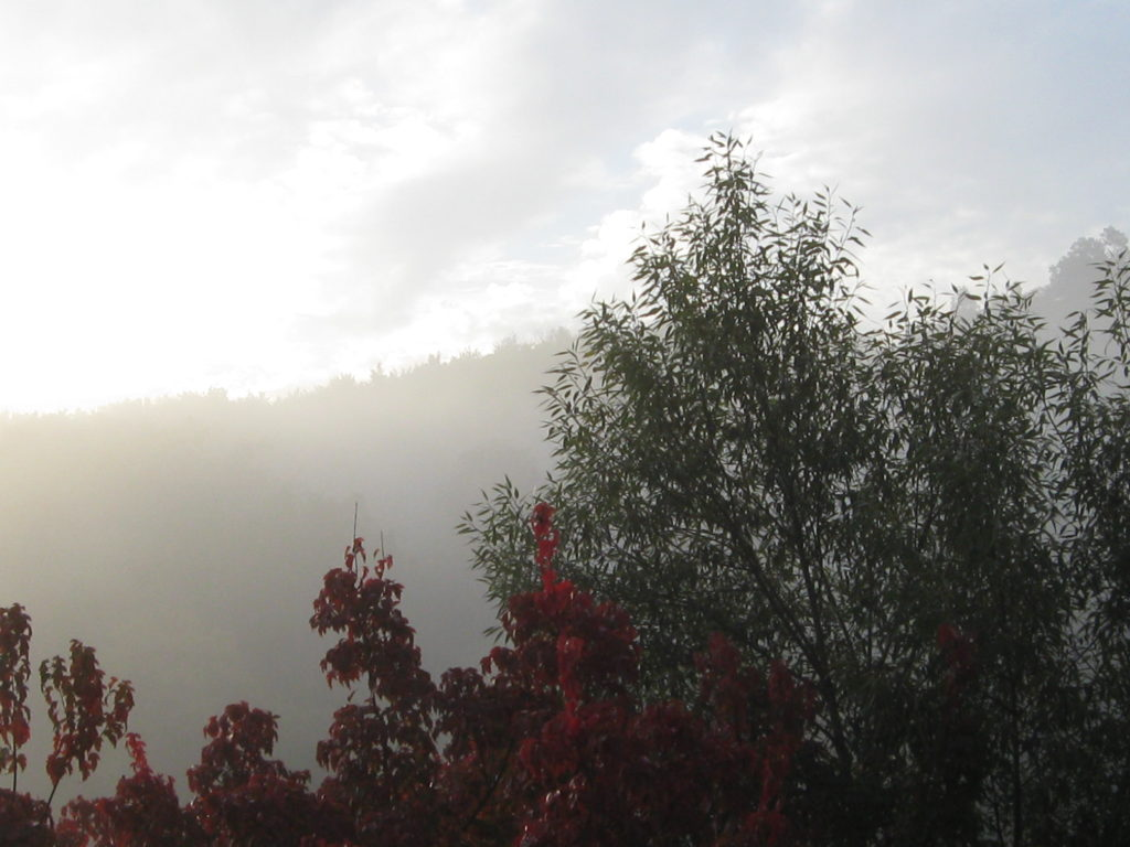 Herbst Nebel 10