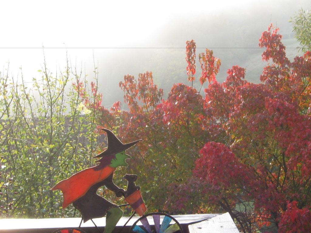 Herbst Nebel 13